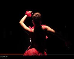 Jorge Pardo estrena su video 'Toro mata'